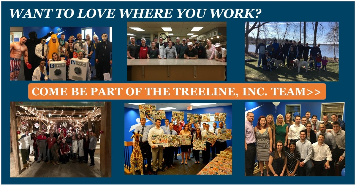Treeline Inc - Best Places to Work - Sales Recruiters