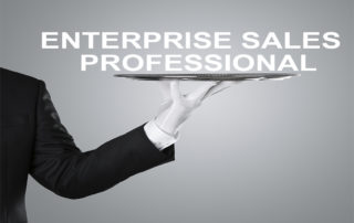 Enterprise Sales Professional Blog Image