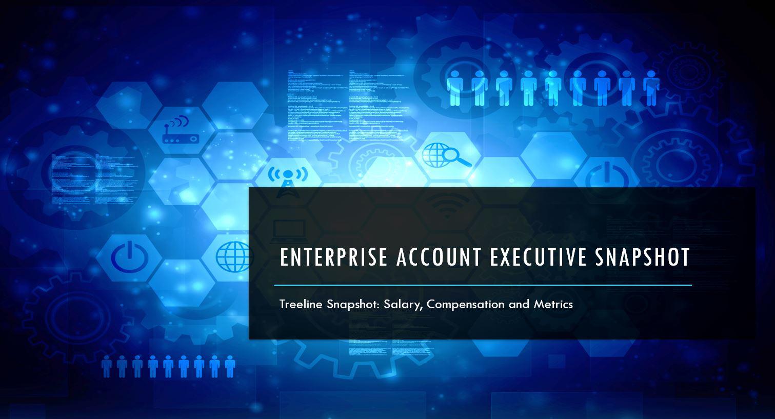 Enterprise Account Executives Industry Data
